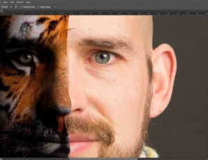 Adobe Photoshop base