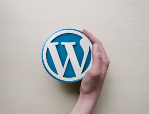 Wordpress Avanzato: come sviluppare un tema